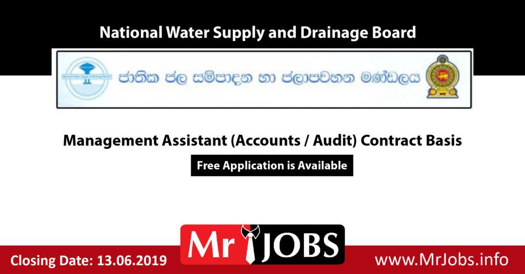 Management Assistant (Accounts / Audit) Contract Basis